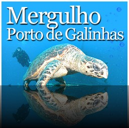 Mergulho em Porto de Galinhas